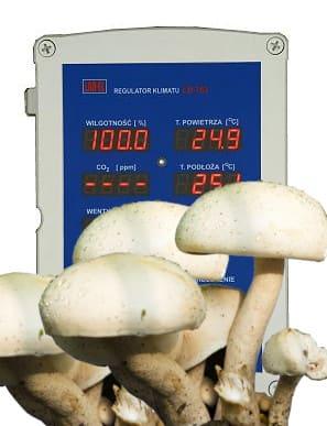Regulatory do uprawy grzybów