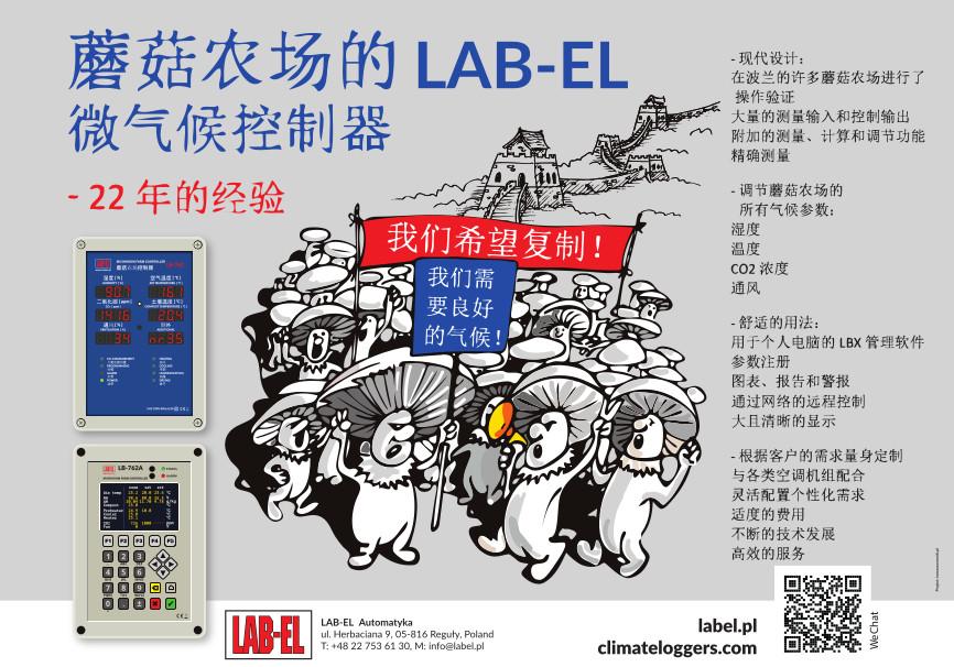 Manifestacja pieczarek - plakat po chińsku