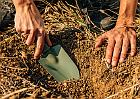 Wilgotność ciał stałych i gleby