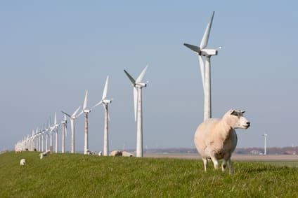 Farma wiatrowa, turbiny wiatrowe